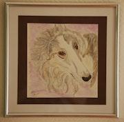 Barnabé, l élégance faite chien, le beau lévrier Russe.