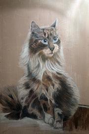Socrate, le chat de Léonie.