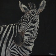 Animals I - Zebra.