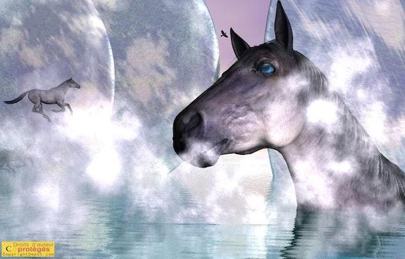 Paysage Plasma 158 - Equus -. Micheline Laufer Lauferartsuisse