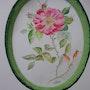 La fragilité d'une rose. Instant éphémère. Ghislaine Phelut