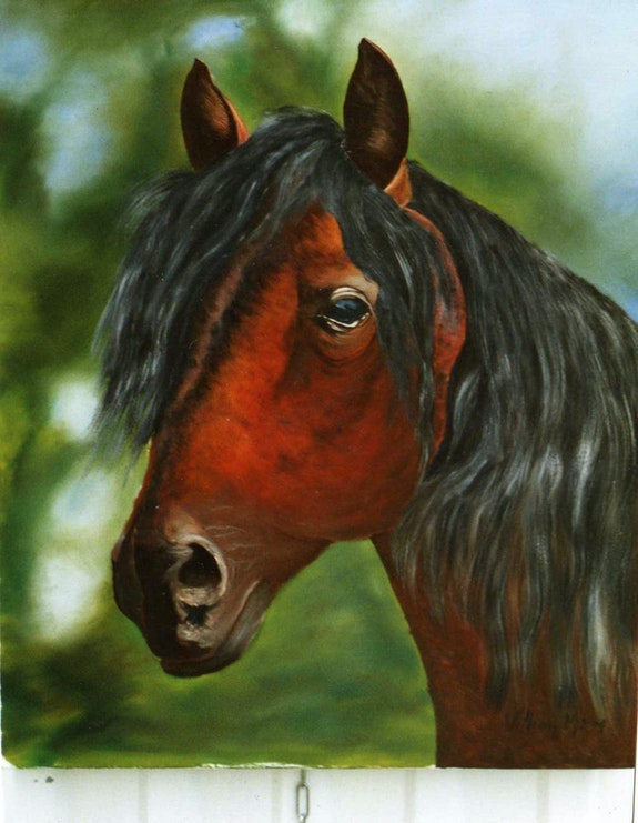 Horse's head under.  Peint La Vie