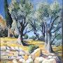 Les oliviers. Philippe Negre