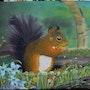 L'écureuil qui se fait plaisir aux figues. Lisette