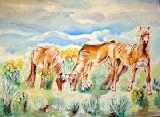 Chevaux de feu dans la prairie.