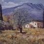 La Provence. M. Machin