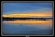 Le Teich (Bassin d'Arcachon). Arno Photographies