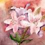 Les lys sont en fleurs. Marie-Noel Toulon