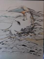 L oiseau mazoute. Acrylique.