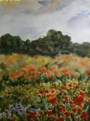 Campo de amapolas, flores de color rojo, acuarela. Myart/Gallery