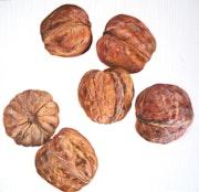 Les noix.