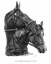 Travailler comme un cheval. Glenn Cotterill