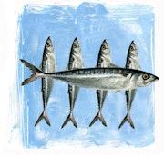 Fish-Reproduction of original monotype.. K-Tea