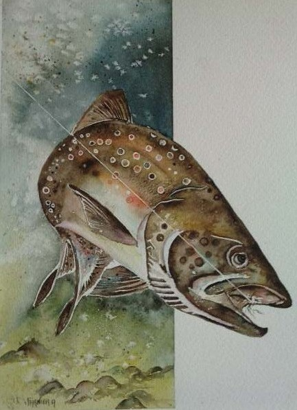 The pride of the brown trout. André Farnier
