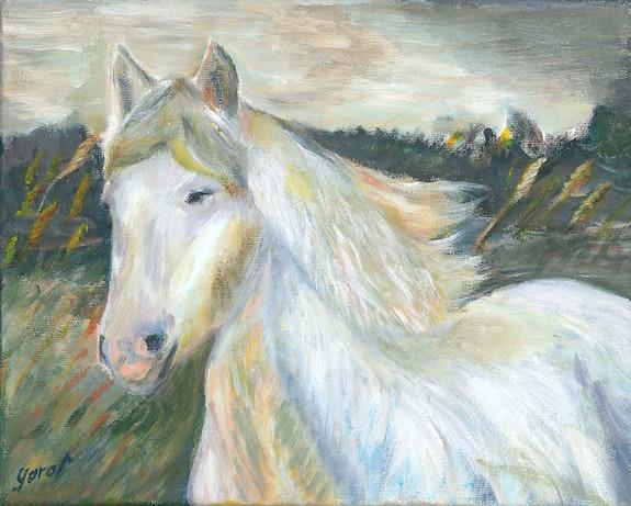 White Horse. Olivier Garat Olivier Garat