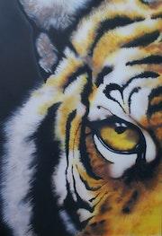 Tigres de ojos.