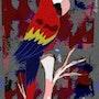 Ara Macao - limited original graphic - Jacqueline_Ditt. Universal Arts Galerie Studio Gmbh