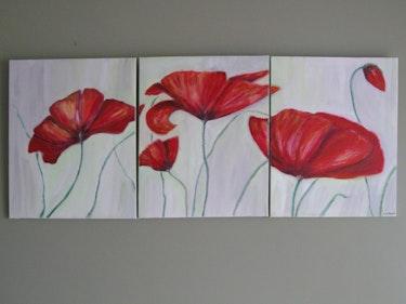 Poppies sunny. Christiane Gilbert