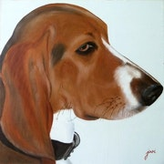 Flash the Basset Artesian.