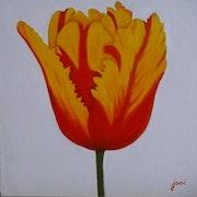 Rote und gelbe Tulpen.