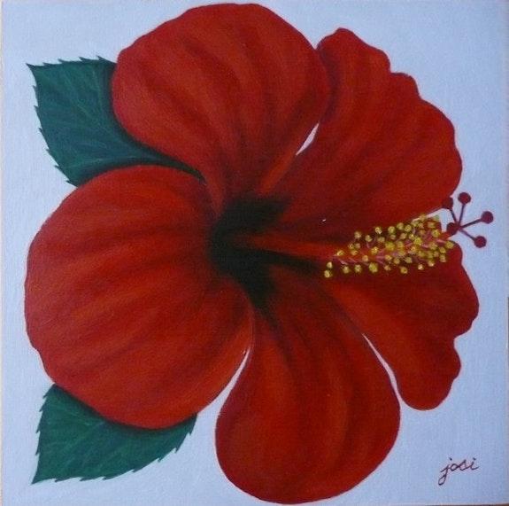 Ibiscus rouge. Josi Josi