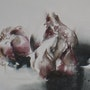 Les auls. Catherine Rey