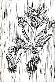 Yuyo (Sinapis Arvensis).