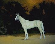 Cheval blanc.