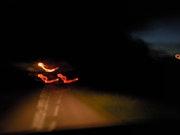 Oiseaux de feu, de nuit.