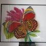 Papillon. Pascal Guillaume