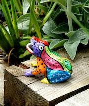La grenouille arc en ciel du jardin.