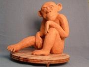 Hector le chimpanzé. Cria