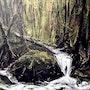 Waldstimmung. Gerald Weigand