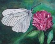 Ephémères et fragiles : la fleur et le papillon.