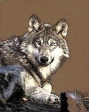 Le loup. Raymond Marcel Depienne