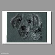 Reproduction de 2 dessins : Chatte Léa et un jeune chien labrador.. Philippe Flohic