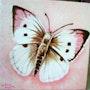 Papillon rose. Colette Trôme