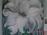 Lys fleur blanche. Maria De Leonardis