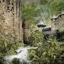 La cité de Carcassonne dans la jungle. La Cie Des Voyageurs/ D. Almon