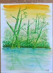 La rivière aux bambous.