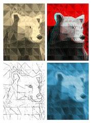 Transformations numerique de l'ours.