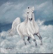 Cheval blanc au bord de la mer.