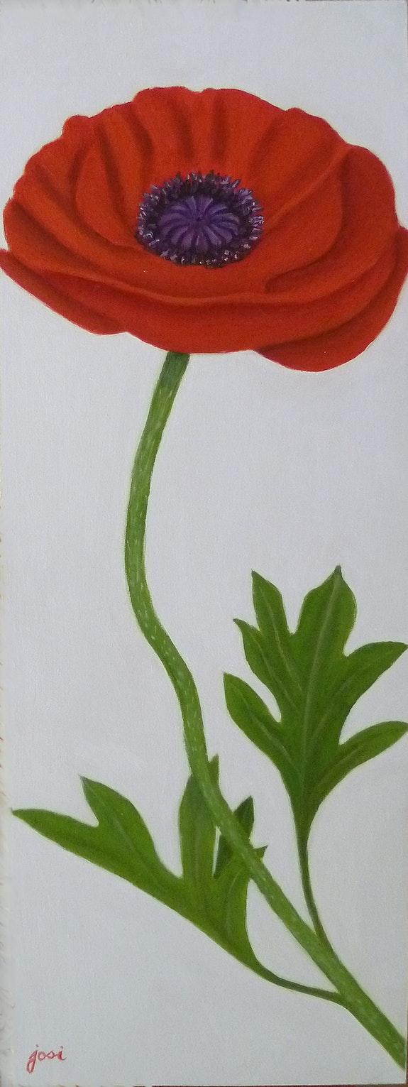 Roses trémières. Josi Josi