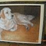 Mon chien couché. Christine Dupuy
