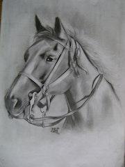 Arte a grafito, mi caballo. Mauro