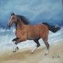 Cheval au galop bord de mer. Marie Colin