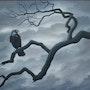 Maitre Corbeau sur un arbre perché.. Braham Zoubiri