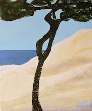Un pin, une dune, la mer….