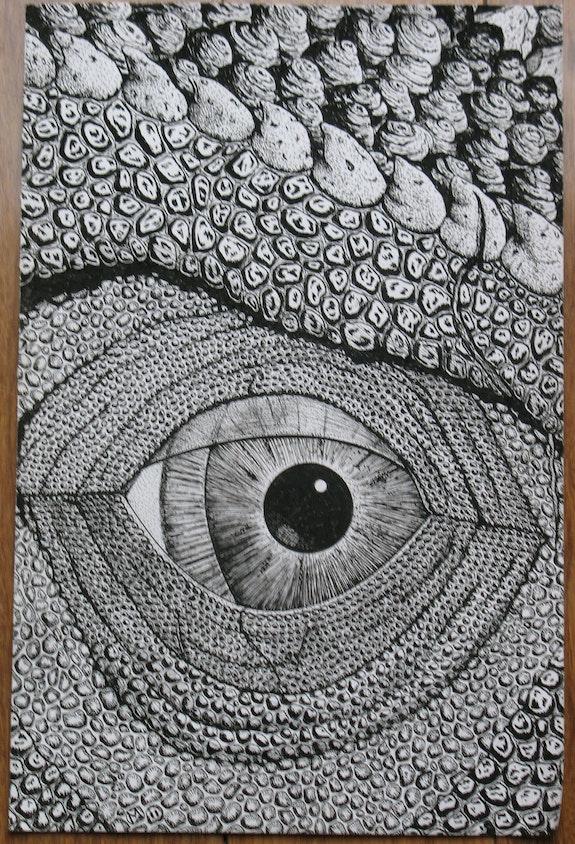 Eye Opens. Martin Jaques Dragonz Art