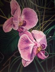 Orchisand 2. Sandrine Hardjani